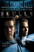 Kaukolės (The Skulls)