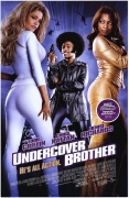 Slaptasis brolis (Undercover Brother)