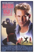 Amerikos nindzė 2 (American ninja 2. The Confrontation)