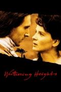 Vėtrų kalnas (Emily Bronte's Wuthering Heights)