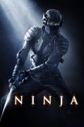 Nindzė (Ninja)