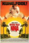 Beverli Hilso nindzė (Beverly Hills Ninja)