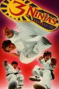 Trys nindzės imasi veikti (3 Ninjas Knuckle Up)