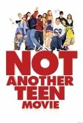 Kitoks parodijų filmas (Not Another Teen Movie)
