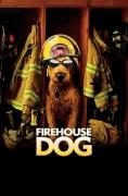Gaisrinės šuo (Firehouse Dog)