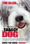 Šuns kailyje (The Shaggy Dog)
